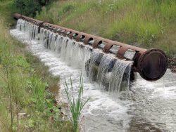 Neue Floßgrabenquelle bei Elstertrebnitz, Foto: Förderverein Elsterfloßgraben