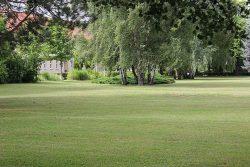 Friedhof mit Kurzrasen: Foto: S. Schreiter; Bildquelle: Lothar-Kreyssig-Ökumenezentrum