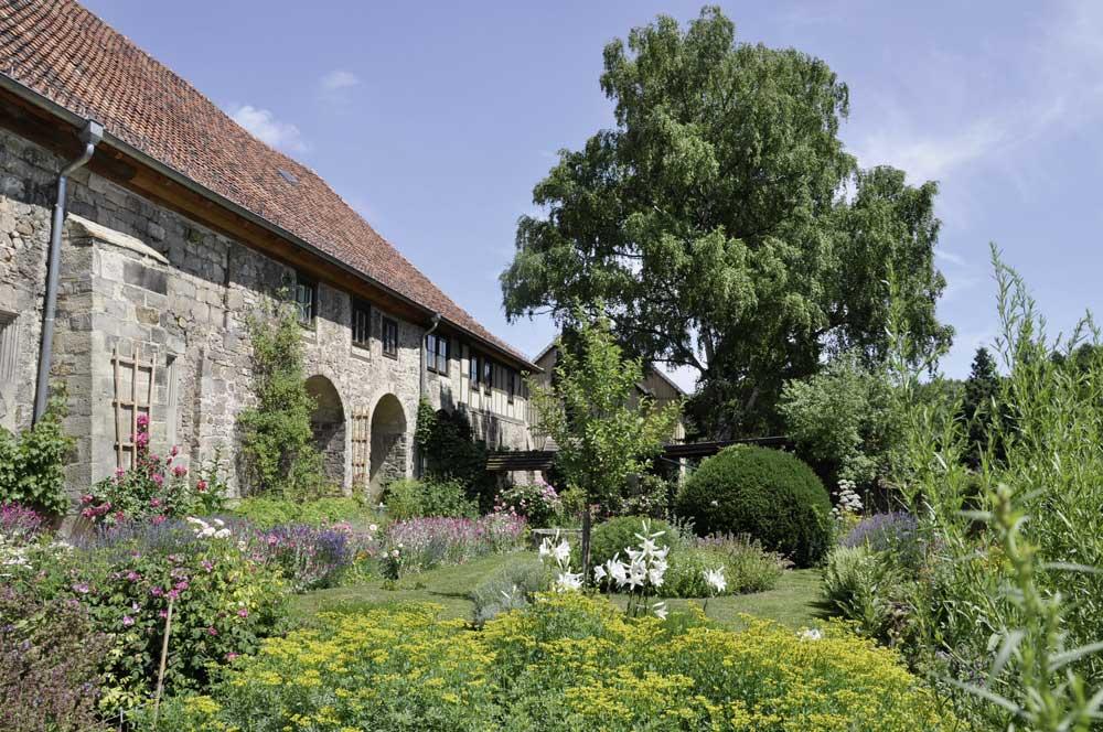 Sommer im Kräutergarten. Foto: Kulturstiftung Sachsen-Anhalt
