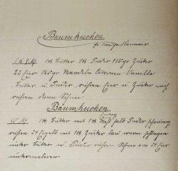 """""""Baum Kuchen""""-Rezeptniederschriften des Johann A. C. D. Schernikow. (Ausschnitt). Archiv M. Lüders."""