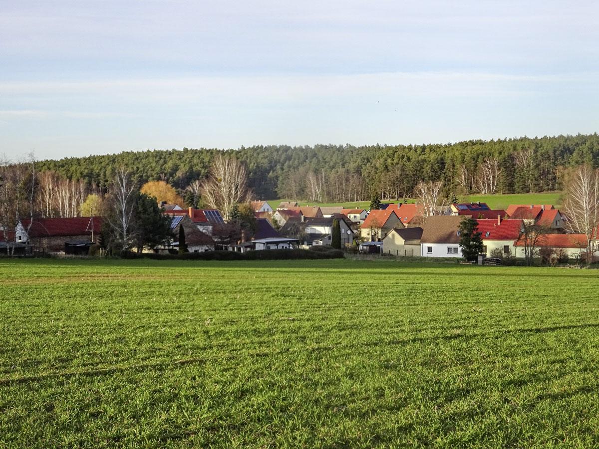 Dorf in der Dübener Heide. Foto: Christian Zschieschang