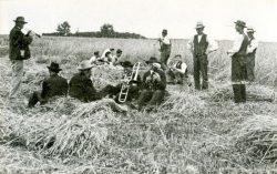 Vesper nach dem Abmähen des Vergodendelstraußes auf dem Roggenfeld des Bauern Heinrich Heymann in Jübar um 1910. Foto: Heinrich Heymann