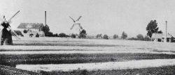 Bild 8: Die Mühlen von Käsebieter und Regeler, in der Mitte ist die Spiritusbrennerei zu sehen. Heimatmuseum der  Stadt Aken.