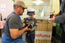 Auch Kaninchen wurden prämiert; Foto: Matthias Behne