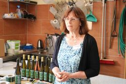 Das Weingut Waschfeld Schleberoda stellt sich vor. Foto: Jan Köhler (MULE)