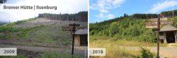 Schnelle Waldregeneration auf einer Freifläche an der Bremer Hütte von 2009 bis 2018; Alena Badurova (2009), Mandy Bantle (2018)