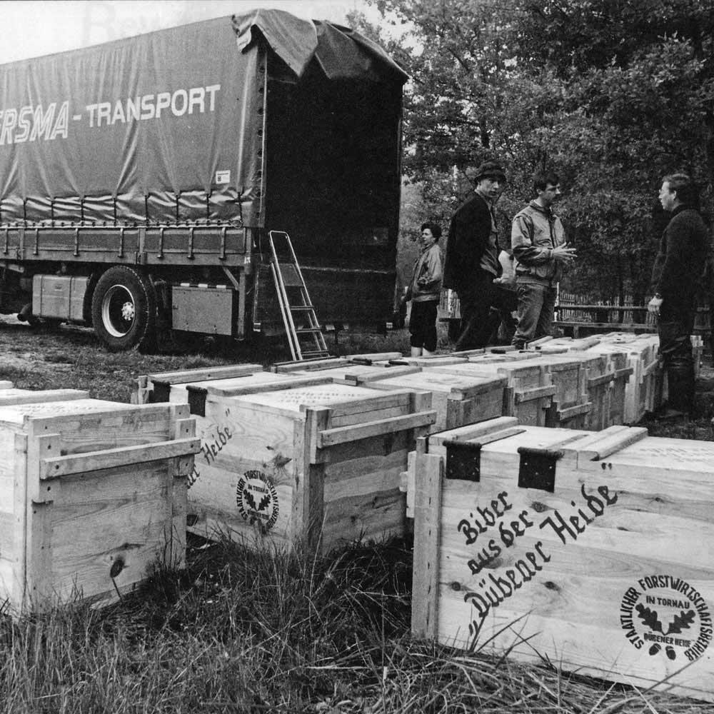"""Heidebiber gehen 1989 auf die Reise in die Niederlande – noch vor dem Mauerfall überwinden sie den """"Eisernen Vorhang"""" als Wegbereiter für ein geeintes Europa; Archiv Verein Dübener Heidee.V."""