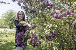 Sabine Volk im Garten Michaelstein. Foto: Kulturstiftung Sachsen-Anhalt