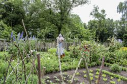 Garten eines Ackermanns im Freilichtmuseum Diesdorf. Foto: FLM Diesdorf
